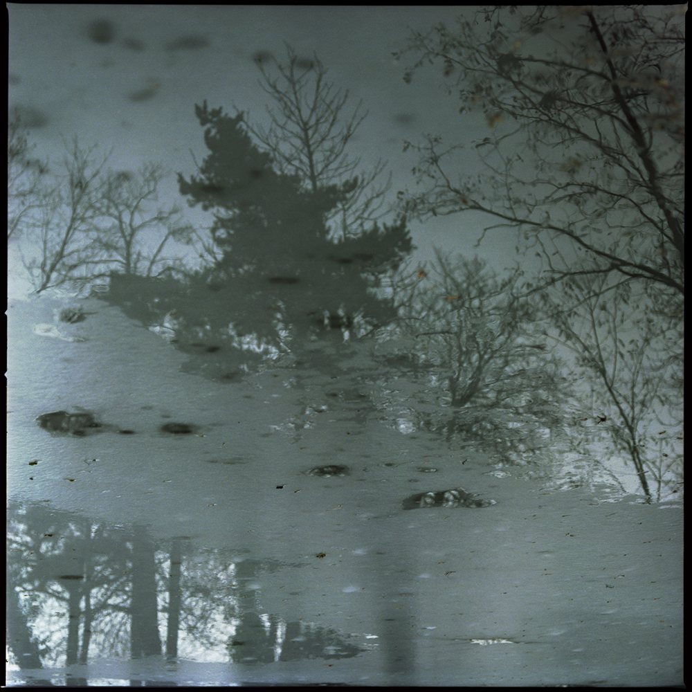 H2O016